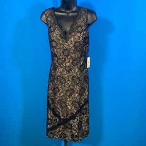 NWT Calvin Klein A-line Black and Nude Lace Dress.